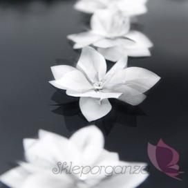 Kwiatki z błyszczącą aplikacją, białe