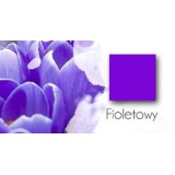 Fioletowy