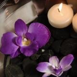 Szkło, świeczniki, świece Świeczki pływające kremowe, 25 szt