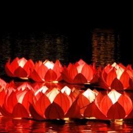 Pływające Lampiony - Kwiat lotosu - Mix 6 szt