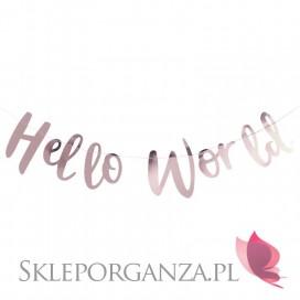 Kolekcja Hello World Baner KOLEKCJA HELLO WORLD