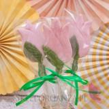 Lizak tulipan jasny róż