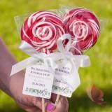 Słodycze dla dzieci Lizak okrągły duży czerwony - personalizacja - dla dzieci - Koniec Roku Szkolnego
