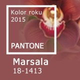 Colour 2015 Marsala