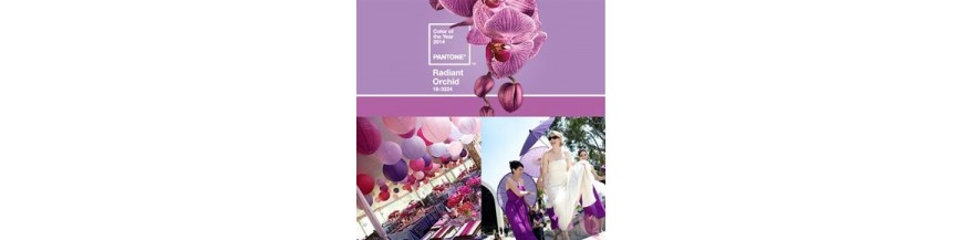 Colour 2014 Radiant orchid